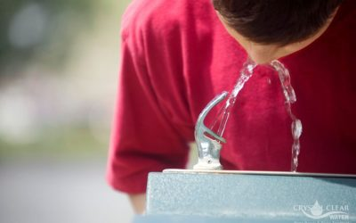 Are Drinking Fountains Safe?